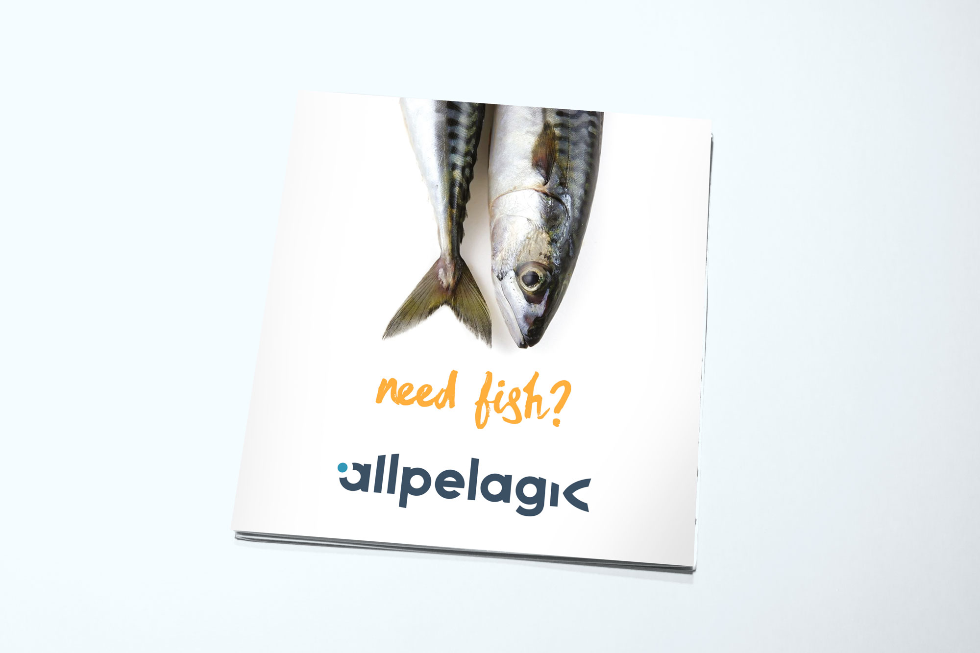 Allpelagic Folleto