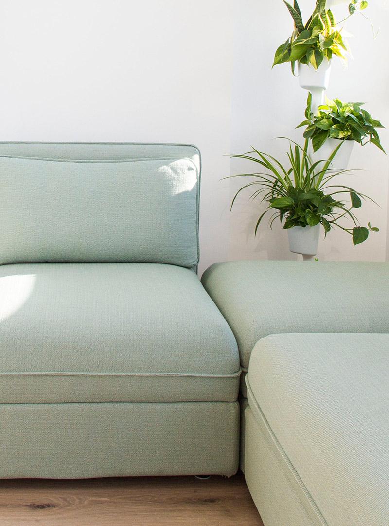 Sofá y plantas